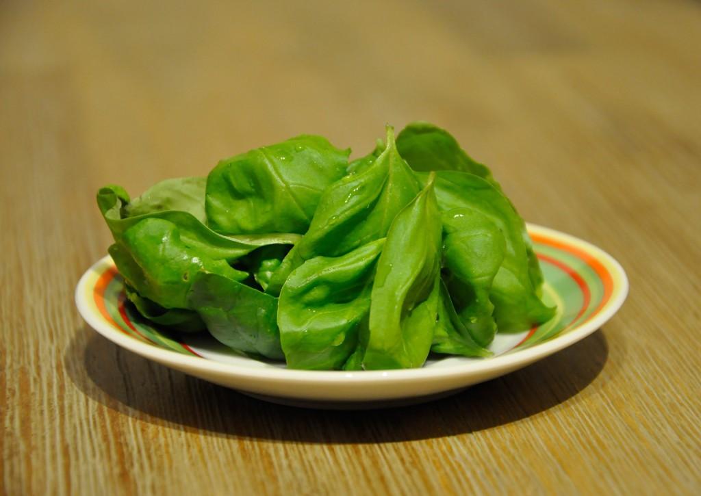 Basilikum waschen - Basilikum Pesto