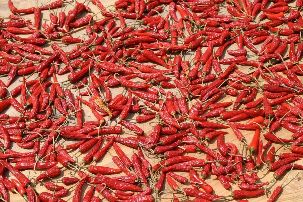 Chiliflocken Rezept - Chilis lufttrocknen
