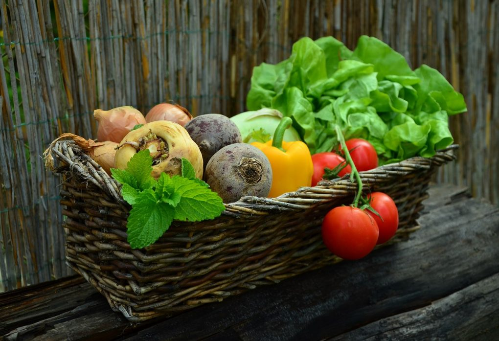 Warenkunde Lebensmittel
