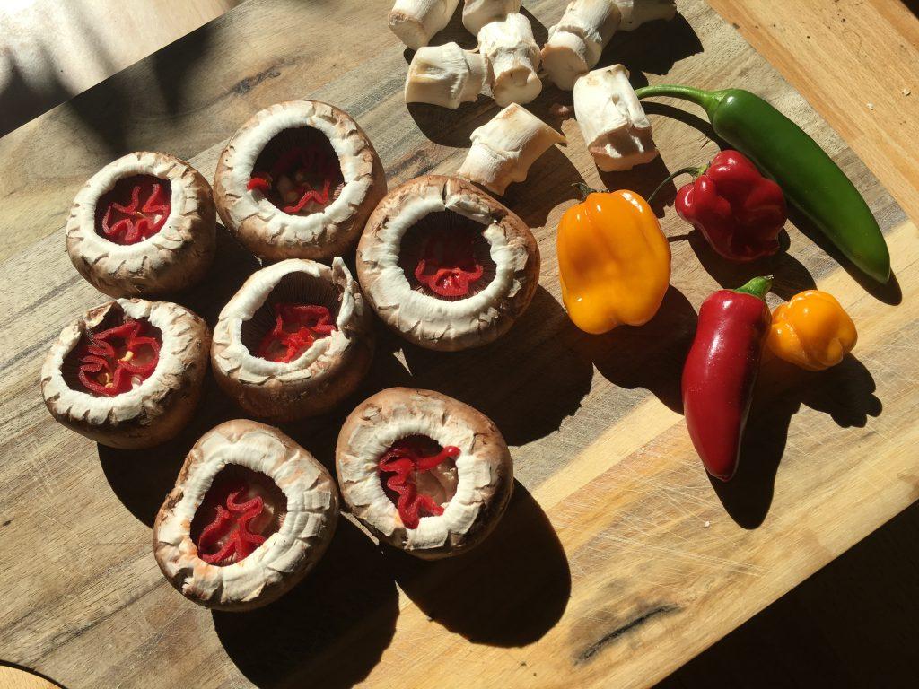 Champignons mit Chili